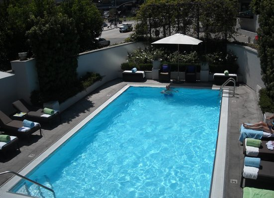 Sofitel Los Angeles at Beverly Hills: great pool