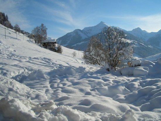 Bergwald: what a landscape in Alpbach