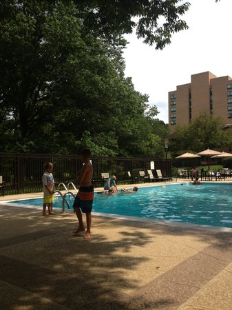 Sheraton Columbia Town Center Hotel : Pool
