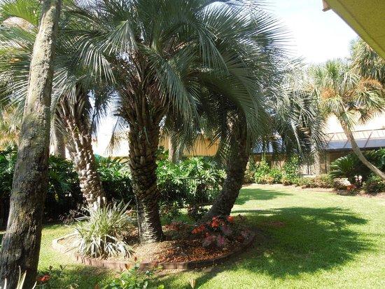 La Quinta Inn New Orleans Slidell: Part of inner courtyard.