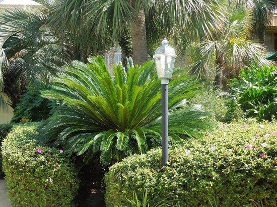 La Quinta Inn New Orleans Slidell: Inner courtyard.