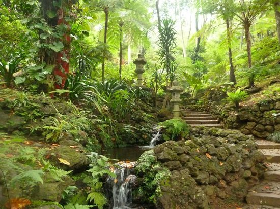 Tui Hotel In Teneriffa Jardin De Tropical