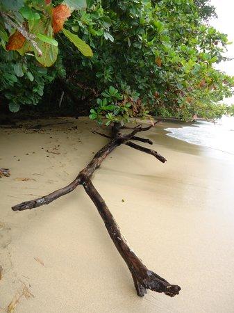 Los Continentes: The beach