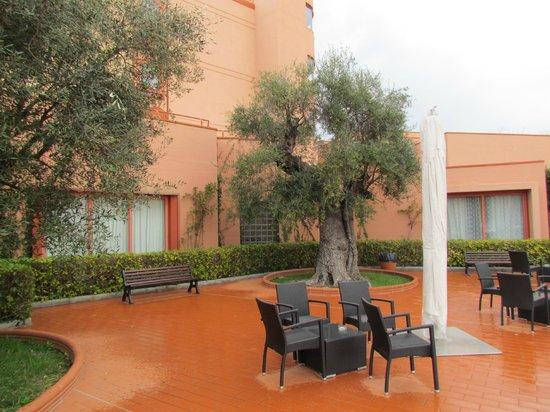 Hotel Siena degli Ulivi: Jardim do hotel
