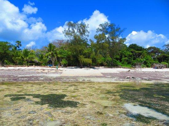 Kinondo Poa: Strand