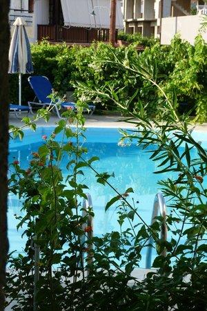 Creta Sun Hotel Studios : pool right outside room 11 door