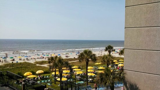 The Palms: good morning myrtle beach!