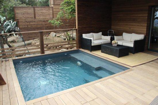 suite prestige avec piscine priv bild von les hauts de porto vecchio porto vecchio tripadvisor. Black Bedroom Furniture Sets. Home Design Ideas