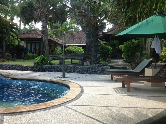 Kebun Impian: pool and garden