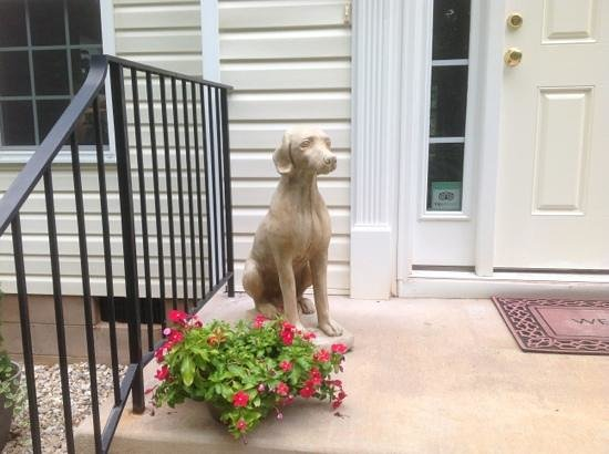 Uphill House Bed & Breakfast: Winston Guards the door