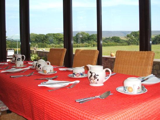 Greenbank Farmhouse B&B: Summer dining