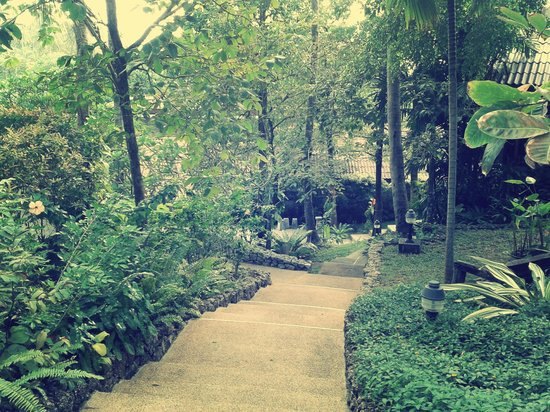 Karona Resort & Spa: Pathway down to the hotel