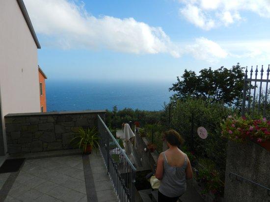 NIRIA vu sur la côte