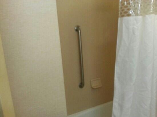 Hampton Inn Clinton: shower/bath. great showerhead and water pressure