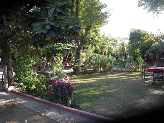 Mandore Guest House - a leafy resort.: Lovely, shaded restful garden