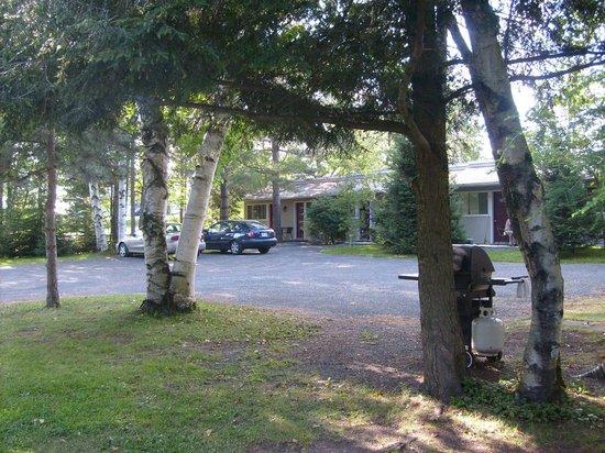 Chalets et Motel Lac Brome: Vue des chambres du motel