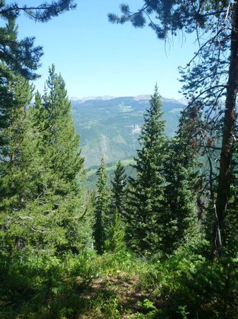 The Westin Riverfront Mountain Villas : Hiking in Vail