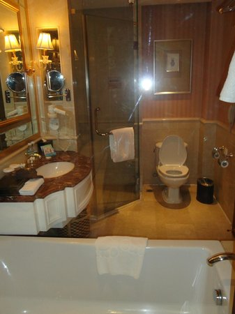 Ritan International Hotel: wc/shower cabin