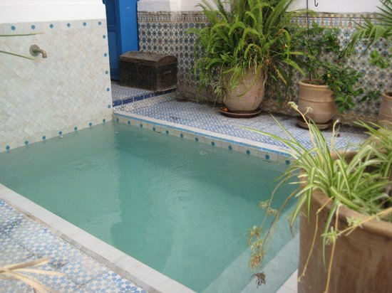 Riad Ifoulki : Pool