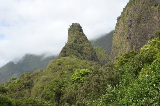 Iao Valley State Monument: Iao Valley - Tolle Fauna und Flora