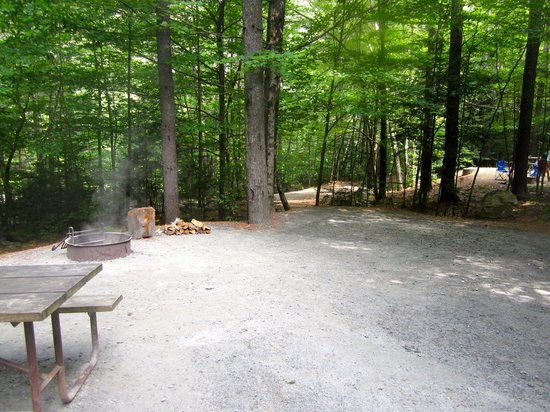 Jamaica State Park Campground照片