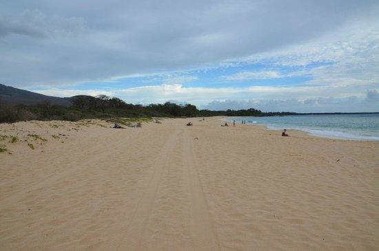 Oneloa Beach: Big Beach