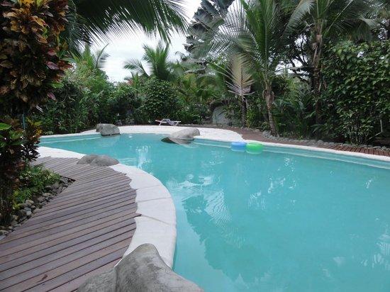 Casa Renada: Grosser Swimming Pool