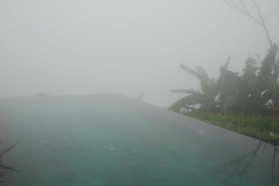 Munduk Moding Plantation: Disappearing pool