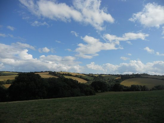 Summerhill Farm: View from Oak Yurt