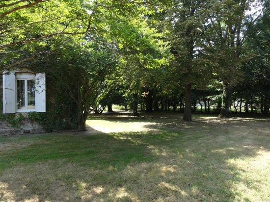 Les Rives du Plantie: parc aux arbres centenaire
