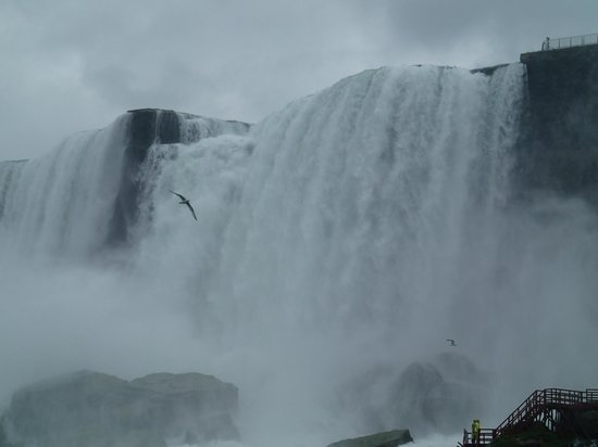 Chariots of Fire Ltd.: A view of the Niagara Falls from the Maid of the Mist.