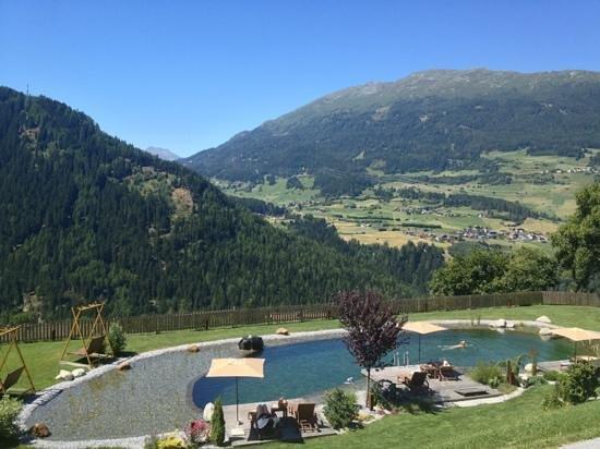Hotel Jerzner Hof: Naturpool