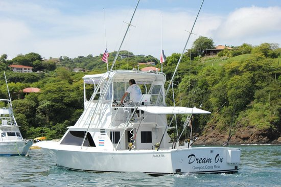 Dream On Sport Fishing - Private Charters
