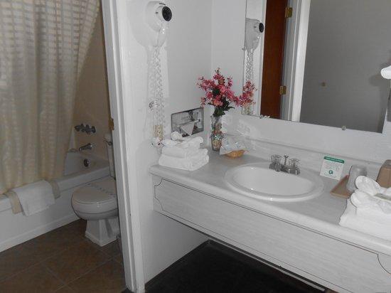 Maverick Motel: bathroom
