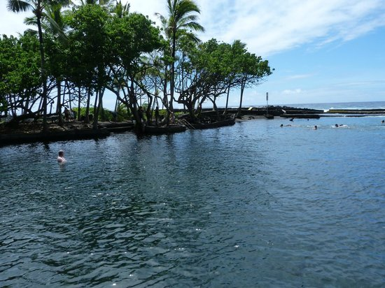 Ahalanui Park: The Tide Pool