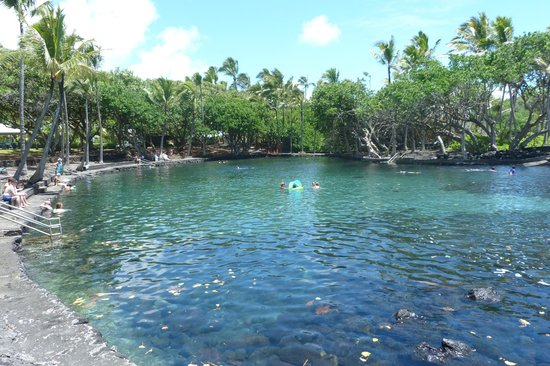 Ahalanui Park: Another view of the pool