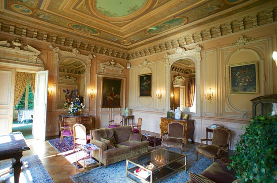 Chateau de la Motte Fenelon : Beautiful salon
