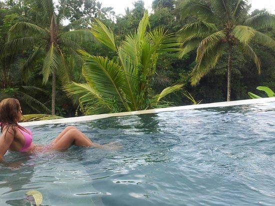 Serenity Ubud Villas: la piscine de chaque villa: je flotte sur la jungle