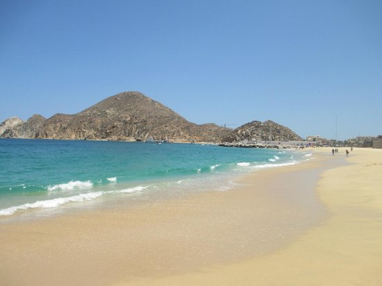 Sandos Finisterra Los Cabos Medano Beach Swimmable Nearby