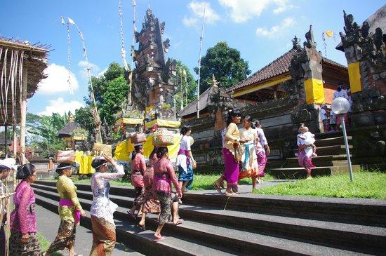 Serenity Ubud Villas: temple du village