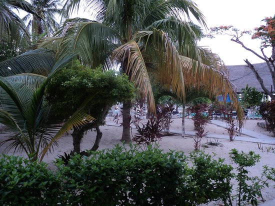 Hotel Posada Del Mar: Near Pool