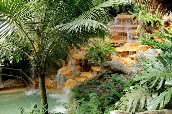 The Springs Resort and Spa : Los Perdidos Springs