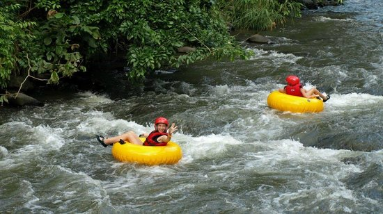 The Springs Resort and Spa: Tubing tour at Club Rio