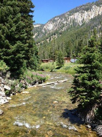 Flat Creek Ranch: view down stream from foot bridge