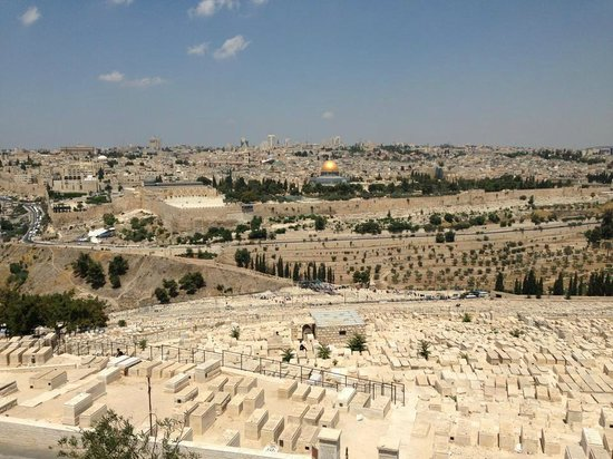 Green Olive Tours - Day Tours : Old City in Jerusalem