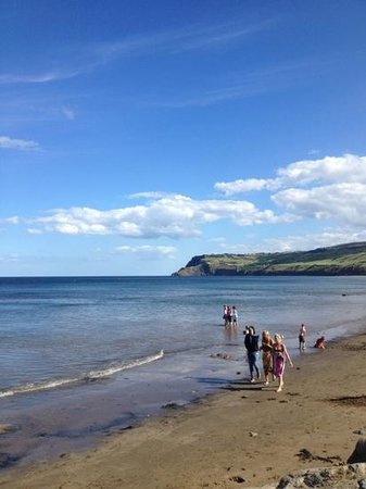 Mariondale Fisheries: Robin Hood bay 5mins round the corner
