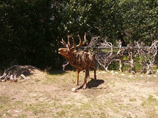 Yodeler Motel: Wooden Elk
