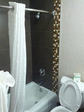Comfort Inn Monticello: New bathroom