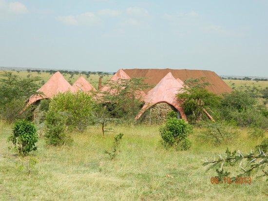 Amani Mara Lodge: Unique design
