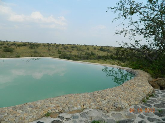 Amani Mara Camp : Swimming Pool- Watch Hippos from drop-off sipping wine